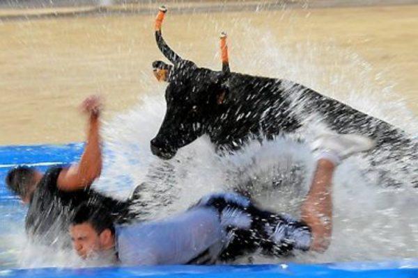 toro piscine - EVG à Montpellier
